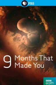 The Nine Months That Made You