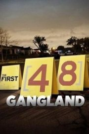 The First 48: Gangland
