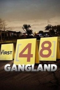 The First 48: Gangland