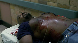 Watch Law & Order Season 20 Episode 21 - Immortal Online