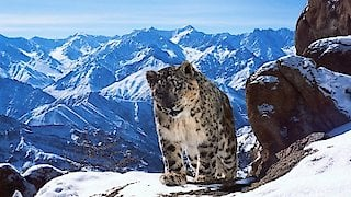 Planet Earth II Season 1 Episode 2