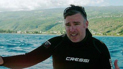 Watch Shark Week Online - Full Episodes - All Seasons - Yidio