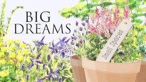 watch big dreams small spaces season 2