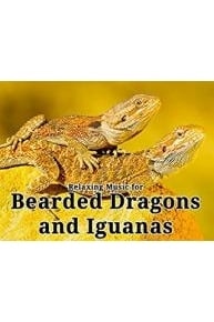 Relaxing Music for Bearded Dragons and Iguanas Online - Full