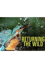 Returning the Wild
