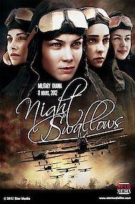 Night Swallows