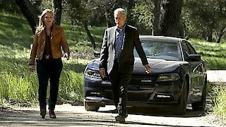 Watch NCIS Season 14 Episode 22 - Beastmaster Online