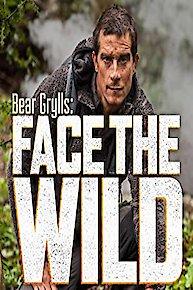 Bear Grylls: Face the Wild