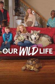 Our Wild Life