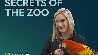 Secrets of the Zoo Season 1 Episode 5