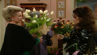 Watch The Nanny Season 3 Episode 9 - The Two Mrs  Sheffields