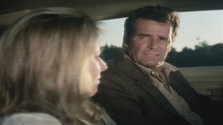 Watch The Rockford Files Season 3 Episode 20 - To Protect and Serve... Online