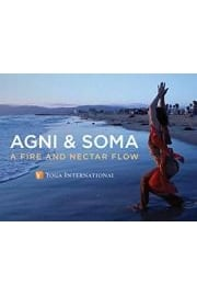 Agni & Soma: A Fire and Nectar Flow