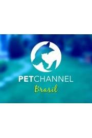 Petchannel Brasil