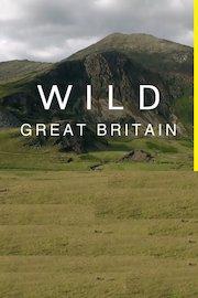Wild Great Britain
