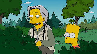 Watch The Simpsons Season 28 Episode 19 - Looking for Mr. Good... Online