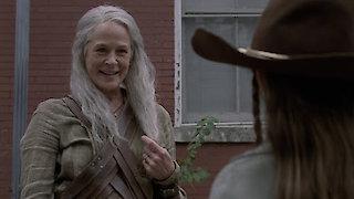 the walking dead season 4 episode 15 watch online free