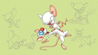 Pinky & the Brain Season 4 Episode 8