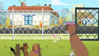 Watch Pound Puppies Season 3 Episode 25 - Lucky Has to Move Online