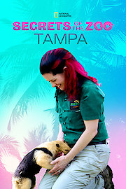 Secrets of the Zoo: Tampa