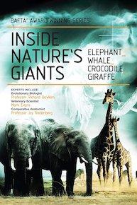 Inside Nature S Giants Season  Episode