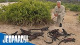 Watch Jeopardy! - GALAPAGOS ADAPTATION | Jeopardy! Online