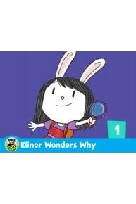 Elinor Wonders Why