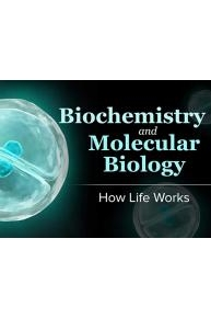 Biochemistry and Molecular Biology: How Life Works