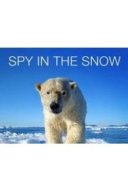 Spy in the Snow