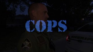 Watch Cops Season 30 Episode 20 - Run And Gun Online