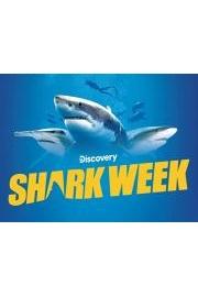 Shark Week 2021 D+ Trailer