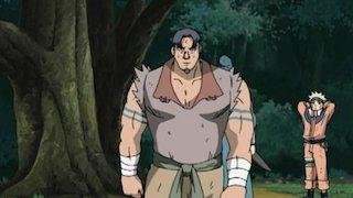 Watch Naruto Season 8 Episode 19 - The Bewildering Forest ...