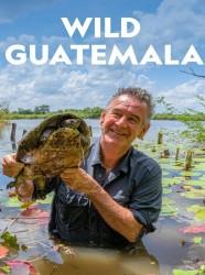 Wild Guatemala